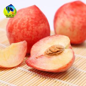 水果预售丨丹江均县镇水蜜桃【5斤/盒】丨前300名额外送2斤