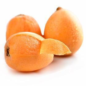四川高山枇杷 攀枝花米易枇杷 大果 非琵琶 新鲜水果 现摘现发 15个 单果40g-60g