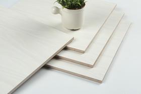 【住范儿 X 欧神诺】白木纹系列简约釉面地砖 300*300 15片/箱