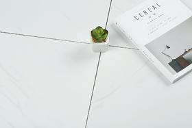 【住范儿 X 欧神诺】卡拉拉白系列全抛釉仿石材纹大地砖 600*600 4片/箱