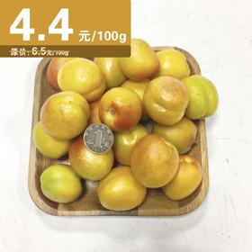 【广州市援疆项目主推】 新疆色买提杏900g 【拍前请看温馨提示】