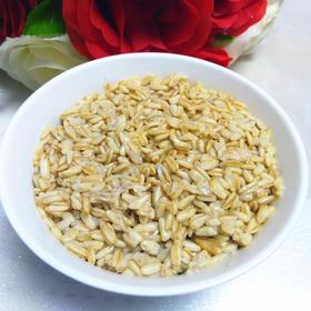 甘肃陇南特产特色小吃醪糟 甜胚子 小麦酿制500g 盒装/袋装包邮