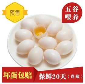 瑞安淘 平阳生态鲜鸽蛋 预售 30枚装 每周二截单 周三发货 市区包邮