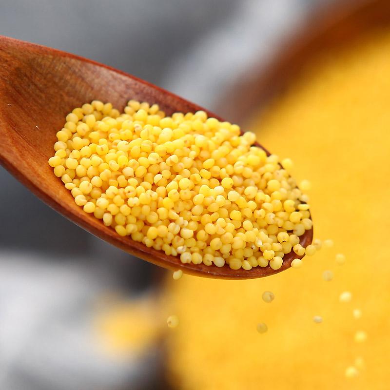 2020年新小米 陕北米脂小米 农家月子米 现磨现发 5斤装 商品图2