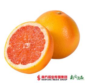 【柔嫩多汁】南非进口西柚4粒 (单果300-400g )省内包邮