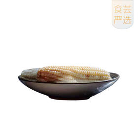 食芸 | 西双版纳香糯小玉米2.0版  软糯香甜 零添加 超级复购爆品 10根装包邮