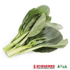 【菜味超足,超淋甜】宁夏菜心 2斤【拍前请看温馨提示】