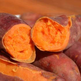 因天气原因,现预售。六鳌蜜薯:海边沙地种植的红薯,充裕阳光带来甜蜜滋味~