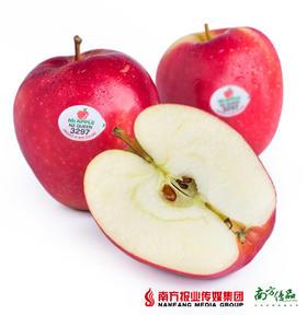 新西兰特级红玫瑰苹果 4个一组(250-270g一个 )【拍前请看温馨提示】