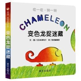 变色龙捉迷藏 0-6岁幼儿适读绘本