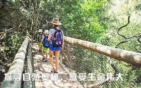 自然生态研学营•森林探秘