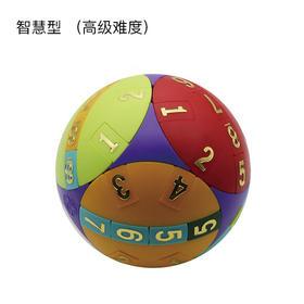 台湾巧智拼球早教数学球——智慧型 (高级难度)