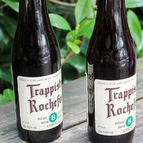 罗斯福8号啤酒330ml*6瓶