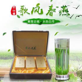 2019年新茶陕西特产安康富硒绿茶新茶白河歌风春燕绿茶珍品礼盒装100g