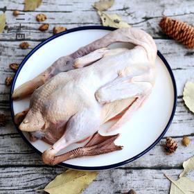原衢味稻田水鸭 在河边自由长大 肉质鲜美 滋补佳品