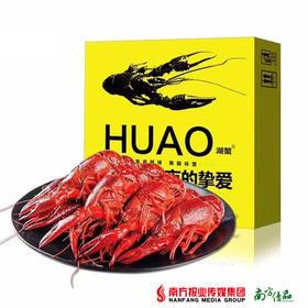 【爽爆麻辣】新鲜出炉的湖鳖小龙虾 4-6钱 虾和汤汁重1.5kg