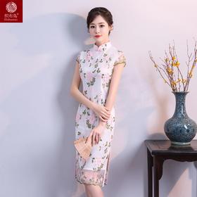 绿蝴蝶高档蕾丝面料修身旗袍YF