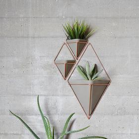 Umbra 立体几何墙饰 新年新家绿色植物装饰 焕新好物