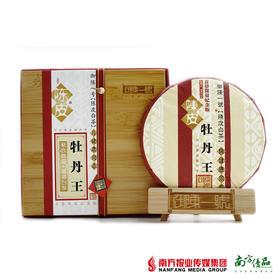 【首发限量纪念版】陈皮白茶特级牡丹王500g【拍前请看温馨提示】