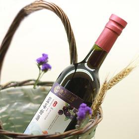 【海归扎根深山8年】蓝莓甜酒~微醺、低度、浆果酿