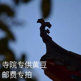 寺庙专供黄豆邮费专拍