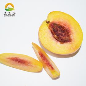 建德本地黄桃 高山黄桃 现摘现发 新鲜水果应季水果5斤