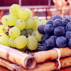 高质不高价!5斤合肥大圩鲜来鲜得高端葡萄尝鲜价。领劵立减35!