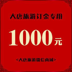 大唐旅游订金专用-1000元