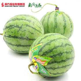 【无籽多汁】帅童西瓜 (每个约2-3斤)【拍前请看温馨提示】