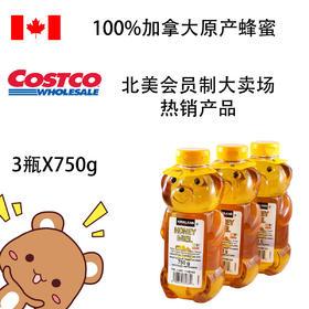 Kirkland Honey 小熊蜂蜜3瓶套装 750g*3/套