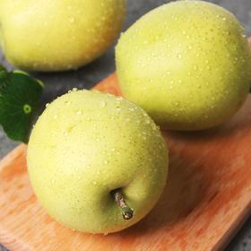(5斤)阅农 | 皇冠梨 黄河优质沙土培育 新鲜采摘美味不等待  5斤/件