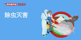 【除虫灭害】蟑螂/老鼠/蚂蚁/跳蚤除虫灭害