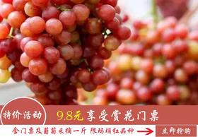 【特价活动】9.8元可享受赏花门票及葡萄采摘一斤(限玛瑙红品种)