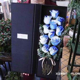 进口厄瓜多尔天空玫瑰