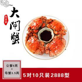 公蟹5两+母蟹3.5两,5对10只装 正宗阳澄湖大闸蟹
