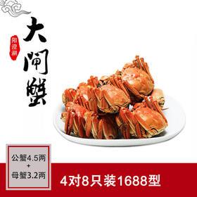 公蟹4.5两+母蟹3.2两,4对8只装 正宗阳澄湖大闸蟹