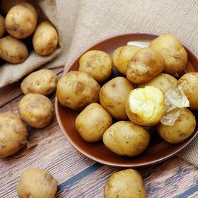 818 | 非转基因恩施富硒土豆 5斤/箱 老式品种马尔科
