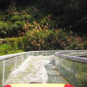 避暑活动|  石龙谷高空玻璃漂流道、趣味旱滑、丛林飞跃、卧龙索桥、射箭,溜索等您挑战