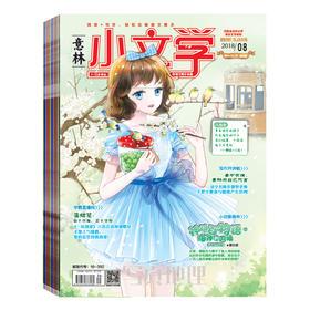 预定【杂志订阅】 小文学 共一套 意林2019年全年杂志订阅  1-12月共12本期刊 发快递
