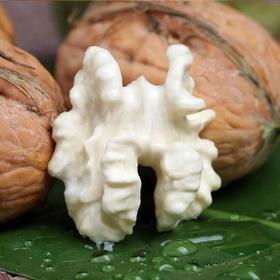青皮核桃新鲜湿核桃带绿皮嫩核桃 野生坚果薄皮孕妇核桃5斤