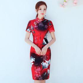 MSF17161淡雅清新修身旗袍