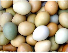 【大别山岳西野鸡蛋 30枚 99元】散养野鸡蛋 单个26-30g左右 口感鲜嫩细腻 健脑益智 改善记忆力 防癌