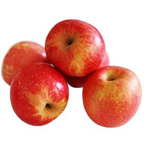 美味之选红将军苹果 | 泸沽湖产区无污染  阳光充足高营养  高维c  8斤净果 坏果包赔 大小果混装