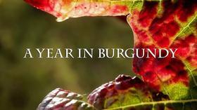 活动丨【8/21 上海】红樽坊夏日电影季之《在勃艮第的一年/ A Year in Burgundy》