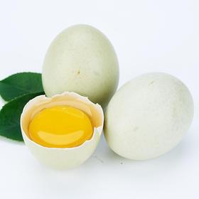预售  2月10号开始发货【散养绿壳蛋20枚】 翡翠蛋  蛋黄橙红 口感香醇 香味浓郁