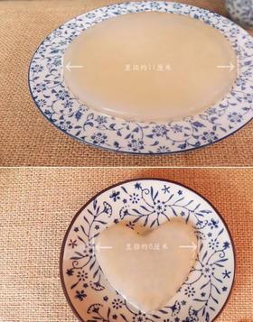 活茶菌DIY套餐 KOMBUCHA BREWING KIT