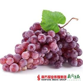 【果肉脆甜】新疆特级红珍珠无核葡萄 2斤