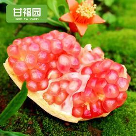 【现摘现发】云南蒙自甜石榴5斤 新鲜当季水果软籽