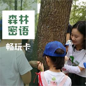 『森林密语』宁波