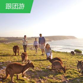 【澳洲--悉尼、墨尔本】澳世无双漫步澳新凯13日游
